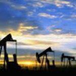petrol cudi