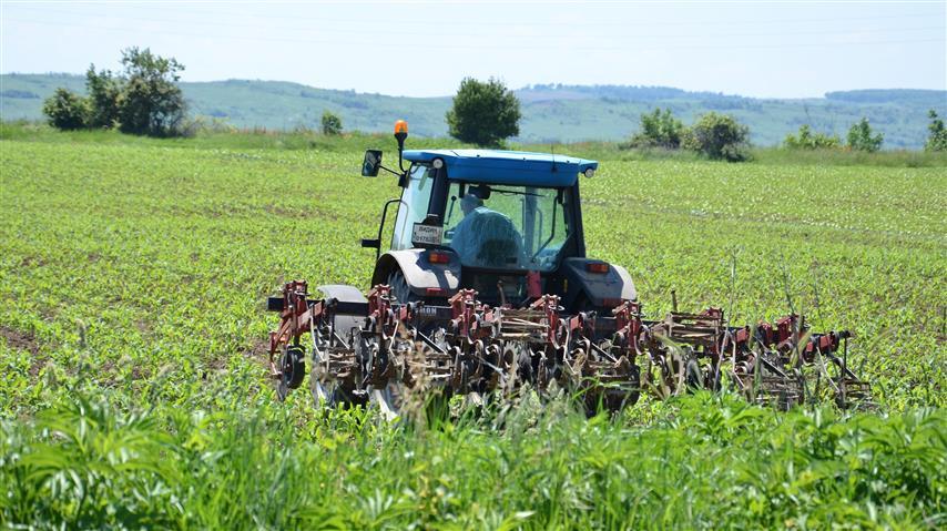 Nüfusun yüzde 20'si tarımla uğraştı