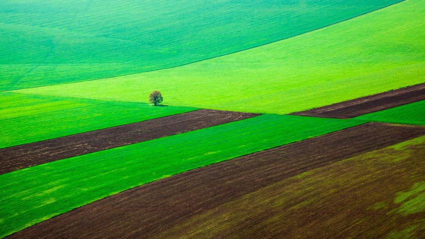 Dünya Bankası uyarıyor: Bulgaristan iklim değişikliğine uyum için önlemler almalı