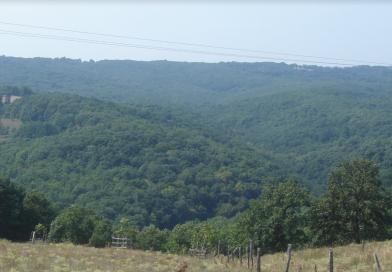 Kırklareli Bulgaristan sınırında erkek cesedi
